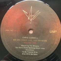 Chris Cornell ‎– No One Sings Like You Anymore (LP, Vinyl, 180g)