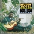 Muddy Waters - Muddy, Brass & The Blues ( LP, Vinyl, Album )